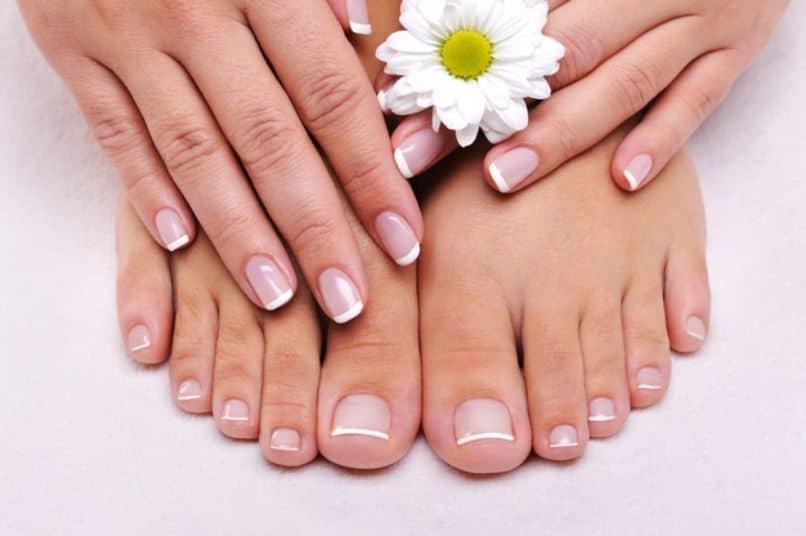 shampoo manzanilla pies flor de manzanilla